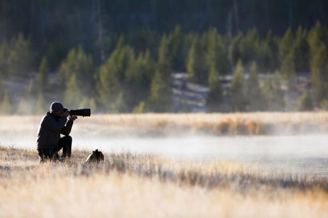 wildlife photographer jobs