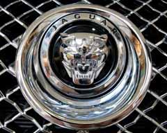 jaguar logo using black