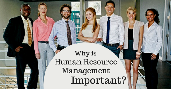 what is human resource management why is it important? wisestepimportance of hrm