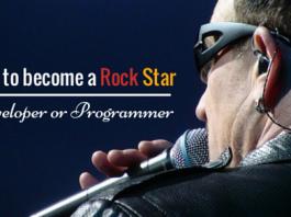 Rock star developer or programmer
