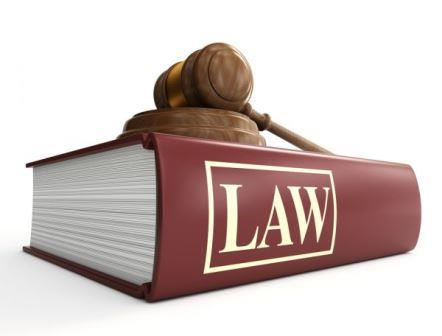 career in law field