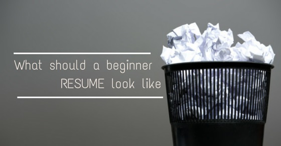 beginner resume look like