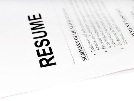 employment history on resume
