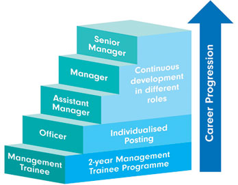 long term career plan