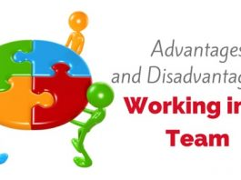 advantages disadvantages working team