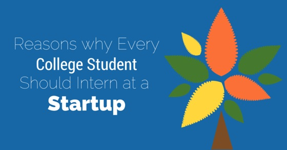 student should intern at startup