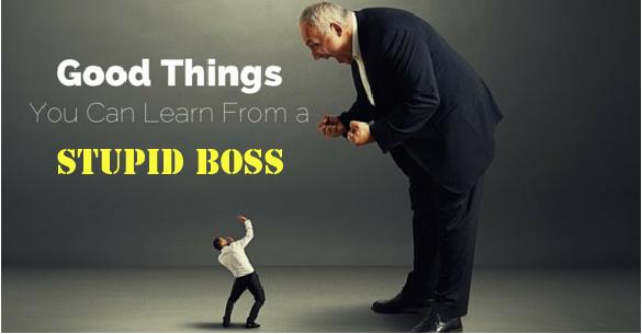 stupid boss
