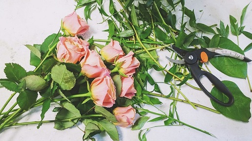 florist environment