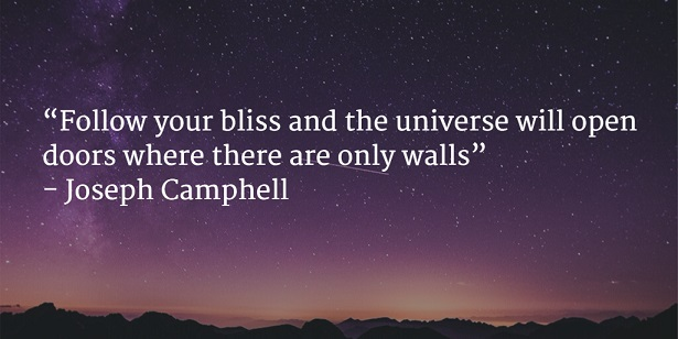 follow your bliss and