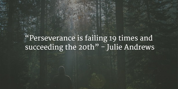 perseverance is failing 19