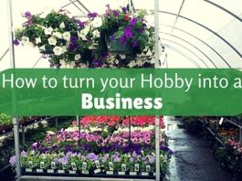 turn hobby into business