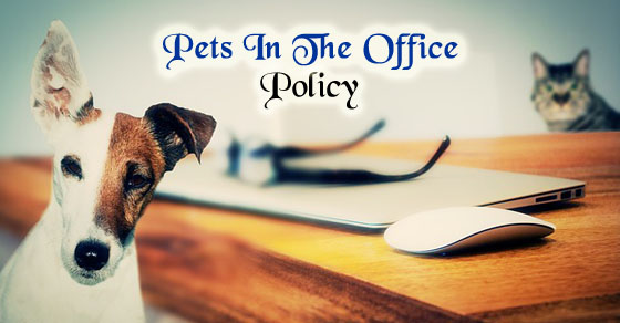 pets in office policy