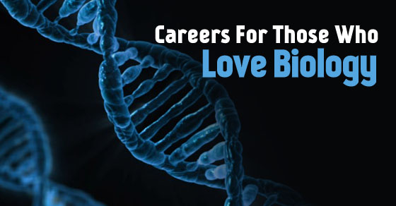careers who love biology