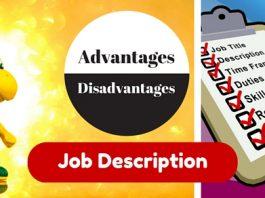 job description advantages disadvantages
