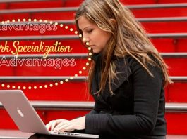 work specialization advantages disadvantages