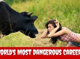 world's dangerous deadlist jobs