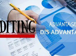 Auditing Advantages Disadvantages