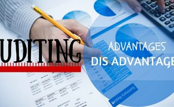 advantages and disadvantages of external audit What are the advantages and disadvantages of the primary types of auditors which type interests you the most please.