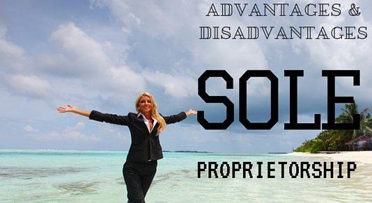Sole Proprietorship Advantages Disadvantages