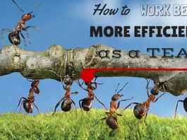 Work Better Efficiently as Team
