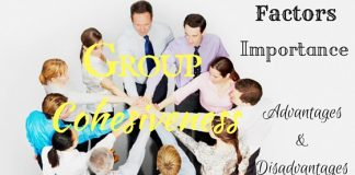 Group Cohesiveness Advantages Disadvantages