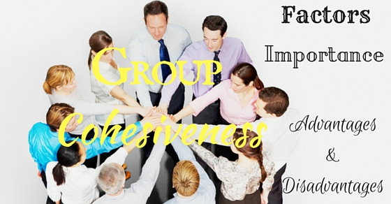 Group Cohesiveness Advantages Disadvantages