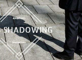Job Shadowing Advantages Disadvantages