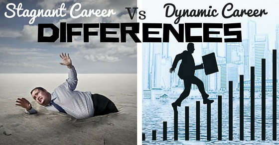Stagnant Dynamic Career Differences