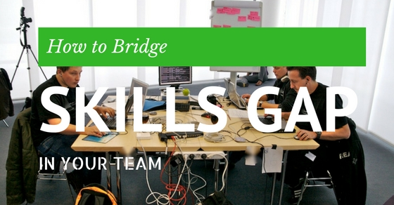 How Bridge Skills Gap in Team