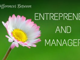 Differences Between Entrepreneur and Manager