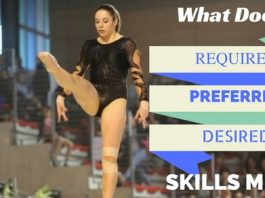 Required Preferred and Desired Skills