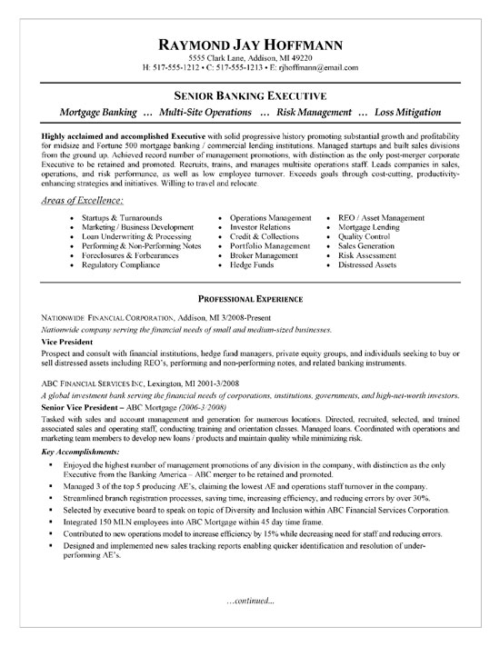 bank executive resume