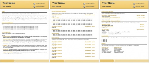 contemporary resume sample