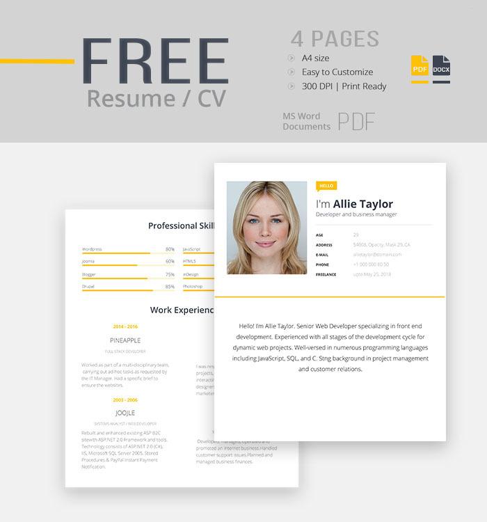 expert resume