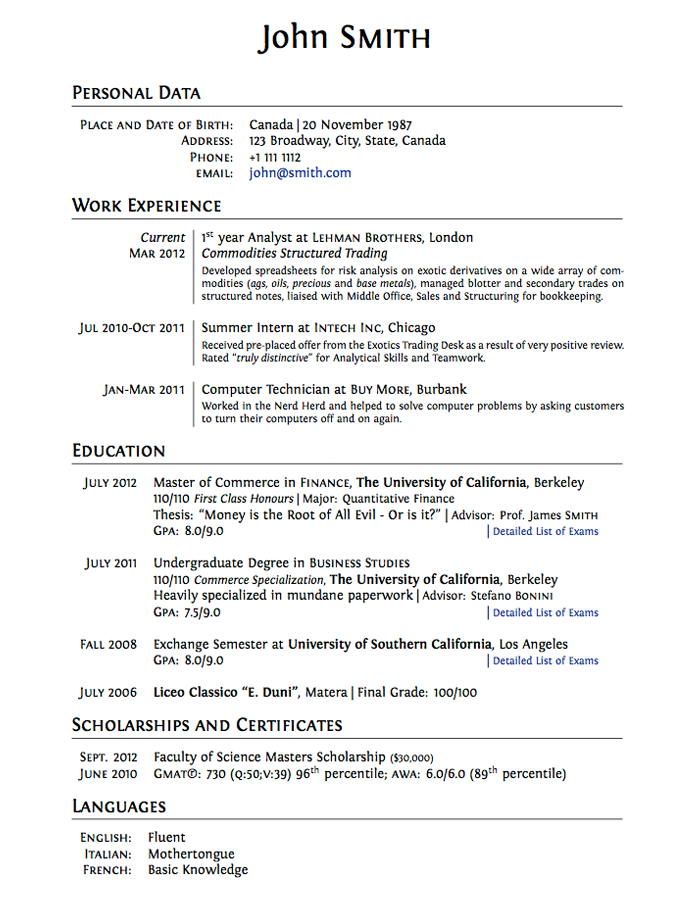 academic cv word template - Selo.l-ink.co
