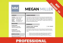 professional internship resume