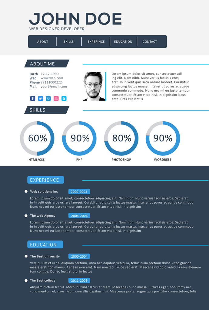 professional web developer resume template - Developer Resume Template