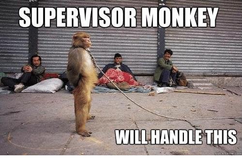 supervisor meme