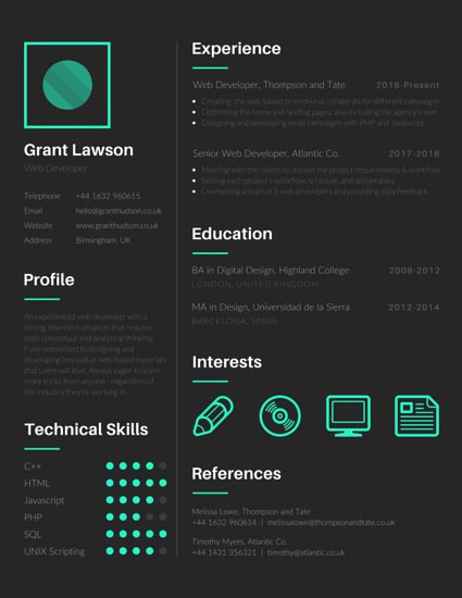 web developer resume format