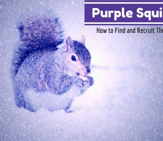 Purple Squirrels