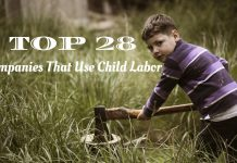 Companies That Use Child Labor