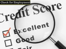 Credit Check for Employment