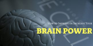 Improve Increase Brain Power
