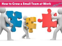Small Team