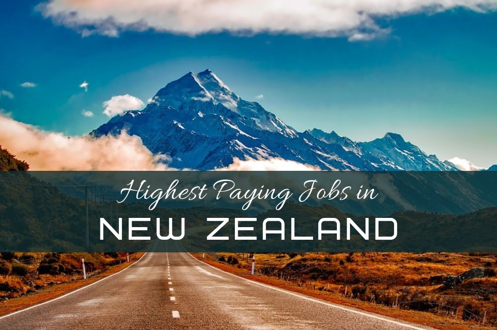 Highest Paying Jobs in New Zealand